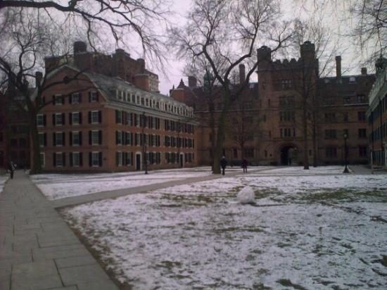 Yale University: Residential College
