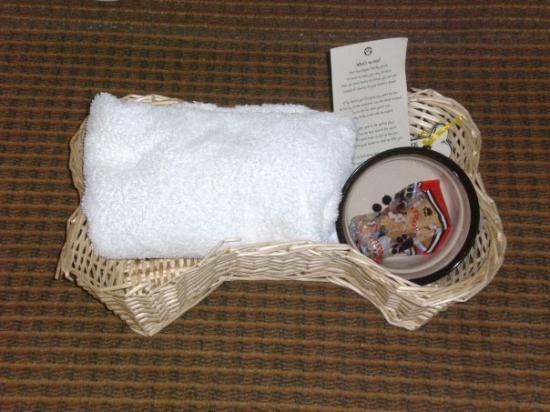 Inn at Seaside: Gift basket for the dogs from the hotel
