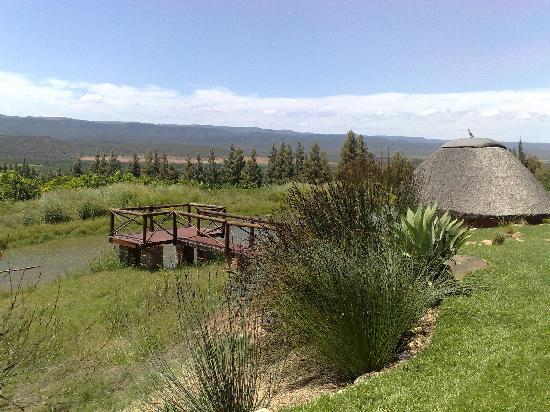Addo Dung Beetle Guest Farm: View