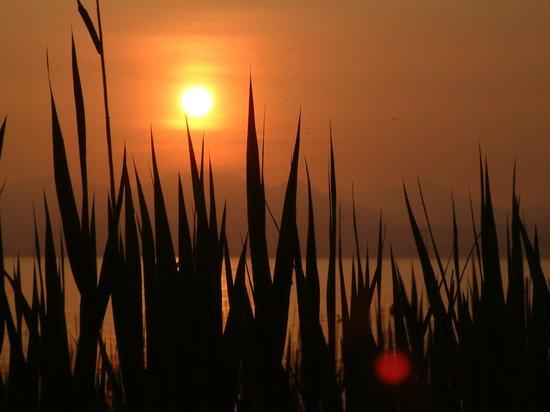 Озеро Гарда, Италия: Lazise - Sunset