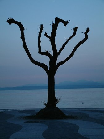 Lac de garde, Italie : Lazise - quayside