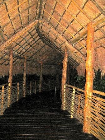 Grand Velas Riviera Maya: Master Suites Jungle path at night