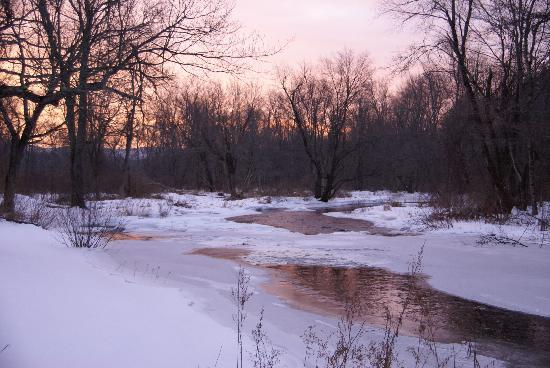 Little River Bed and Breakfast: The Nubi in Winter