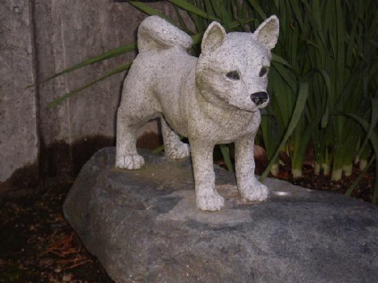 Daigakuin Temple: 「八犬」の一匹