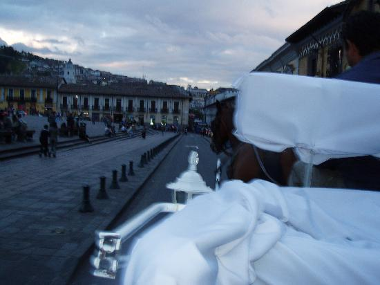 Quito Old Town: Horse carriage historic center