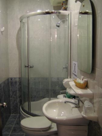Saigon Mini Hotel 5: Small but functional bathroom