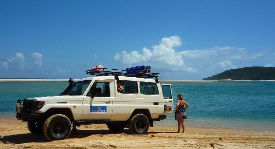 Noosa Safaris: The idyllic lagoon where you can cool off.