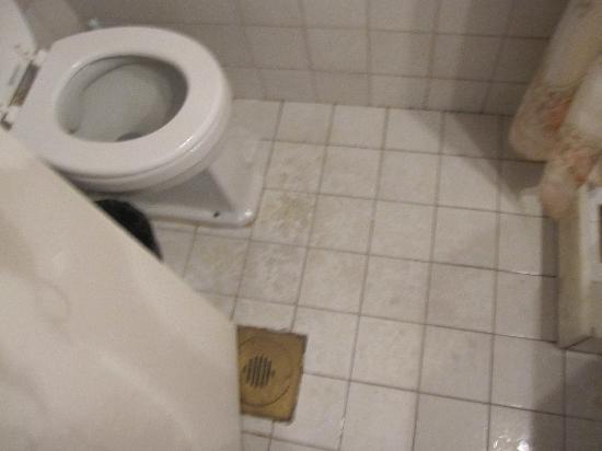 Azulejos Baño Seguro:azulejos del bano del hotel americana: fotografía de Hotel Americana