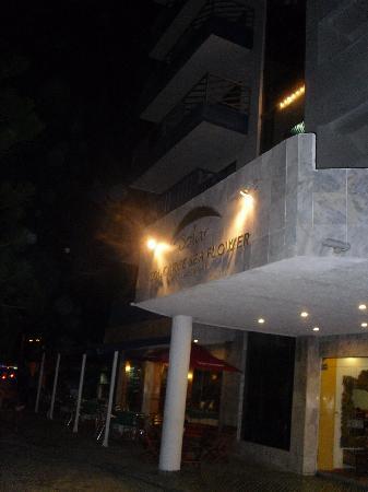 Sol Caribe Sea Flower Hotel: Acceso al hotel
