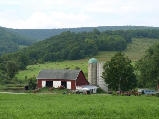Covington, PA: Love the barns around here