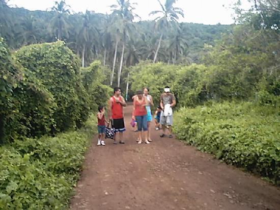 Mar de Jade Retreats Wellness Vacation: El precioso acceso al hotel