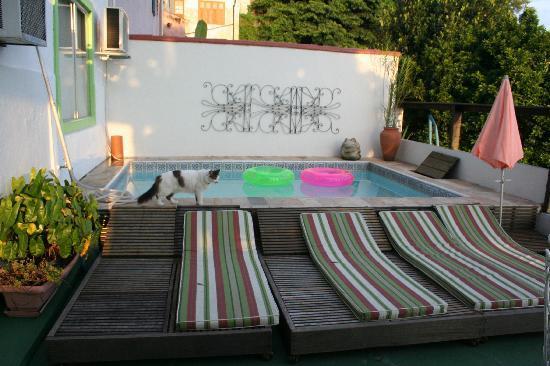 Casa da Carmen e do Fernando : Plunge pool on terrace