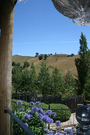 Upper Moutere, New Zealand: the view from the veranda