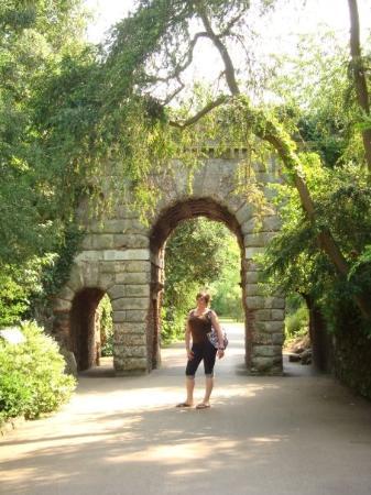 Bilde fra Royal Botanic Gardens Kew