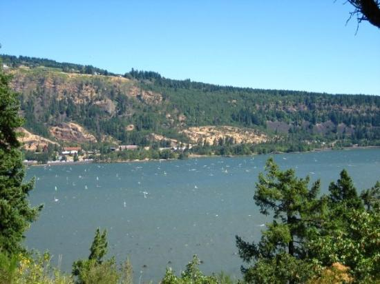 Bonneville fish hatchery gift shop picture of columbia for Hood river fishing