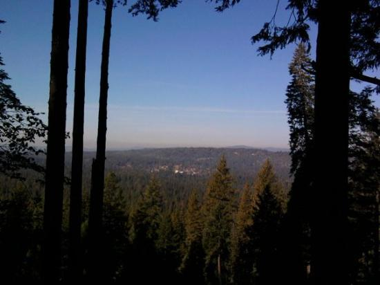 Looking down into Nevada City from the Top of Banner Mountain