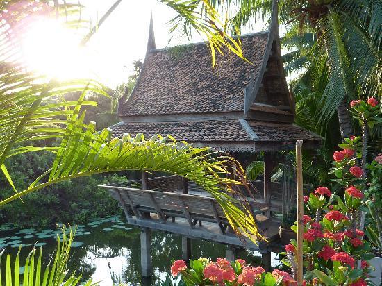 Lotus Pond & Thai Hut - Picture of Baan Thai House, Ayutthaya ...