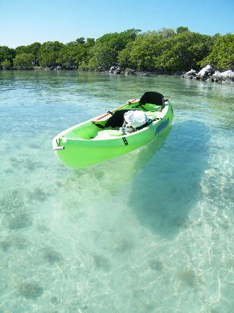 Little Conch Key: Crystral Clear Waters