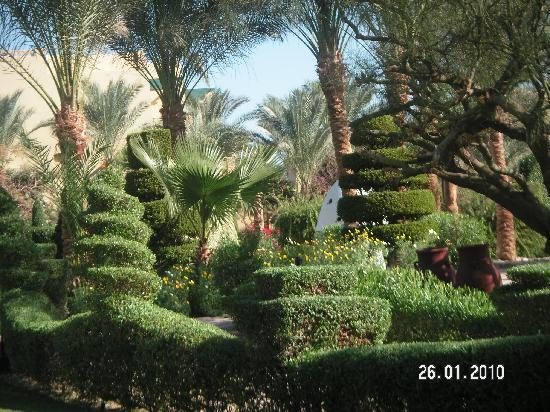 Jaz Makadi Star & Spa: Les jardins sont splendides