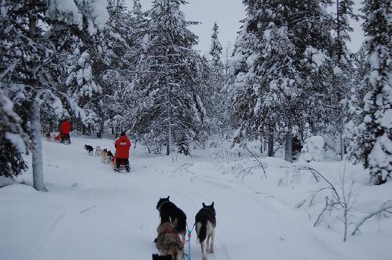 Akaslompolo, Φινλανδία: auf Tour durch die verschneit Landschaft