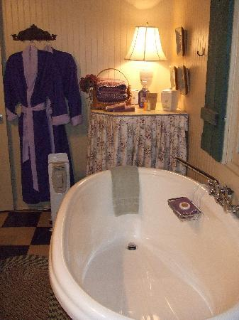 Mulberry, TN : the bathroom in the cottage