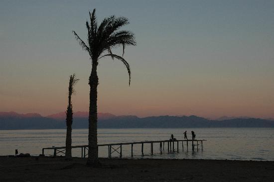 Sea Sun Hotel Dahab: Blick aus dem Fenster