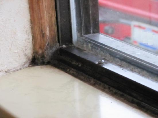 Americas Best Value Inn Columbus North Furry Mold In Window Sill