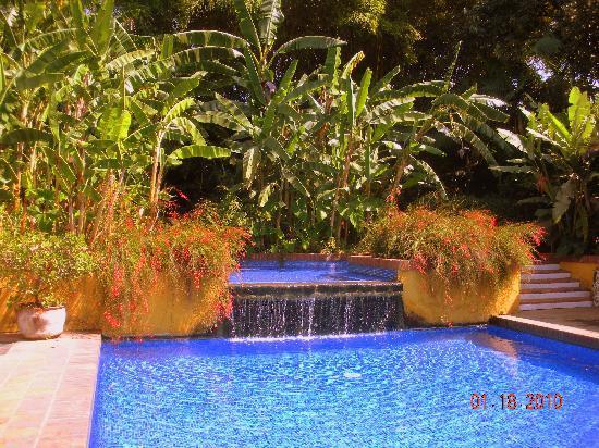 Quinta de las Flores: Pretty Pool