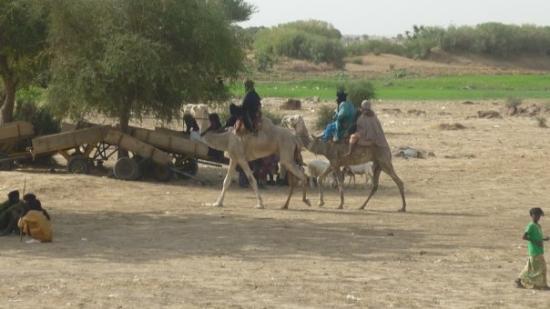 Niamey, Níger: Ayorou - Touaregs -