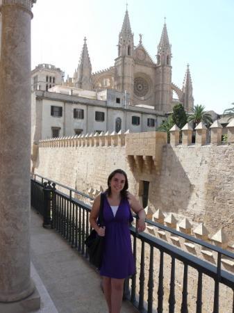 Catedral Desde El Palacio March Bild Von Mallorca