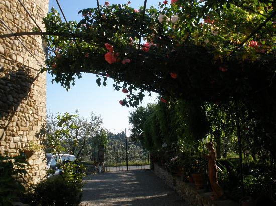 Villa Le Torri: the grounds at Le Torri