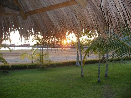 Los Suenos Marriott Ocean & Golf Resort: Lawn