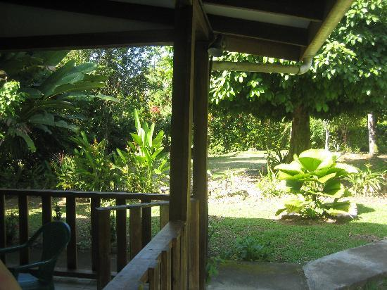 Cabinas Caribe Luna: looking out from the Cabina's patio