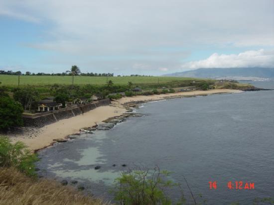 Paia, HI: ホオキパビーチ