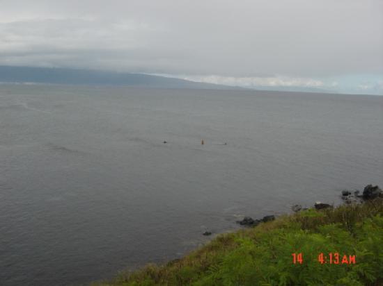 Paia, Havai: 夏は波がない