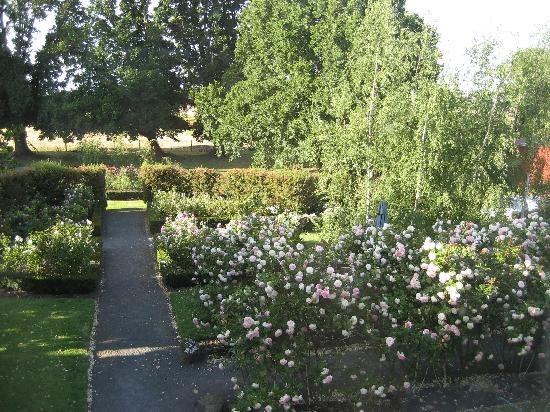 Timboon House & Stables: Back Gardens