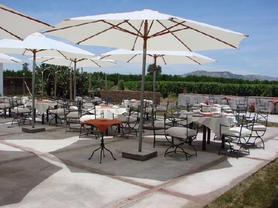 Ristorante Vino Bello: Terraza Vino Bello