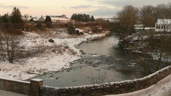 Halkirk, UK: View from our window - December 2009.