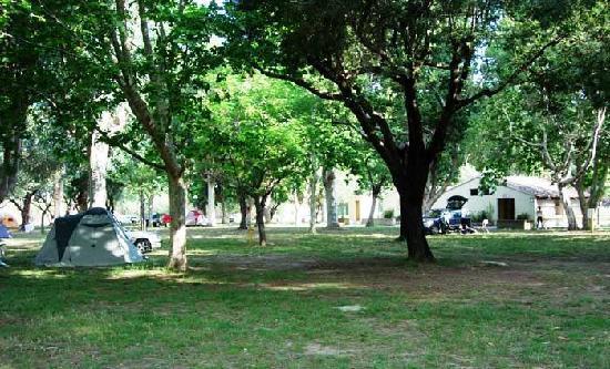Camping D'Olzo : calma e ombra