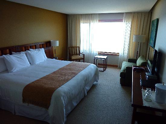Hotel Cumbres Puerto Varas: superior room