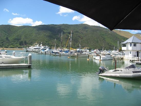 Havelock, Nueva Zelanda: View from Slip Inn