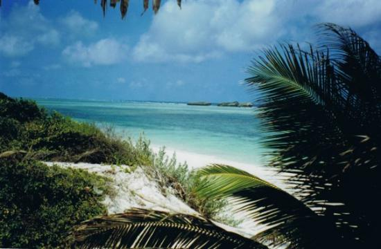 "Watamu Beach : Watamu ""Sardegna 2"""