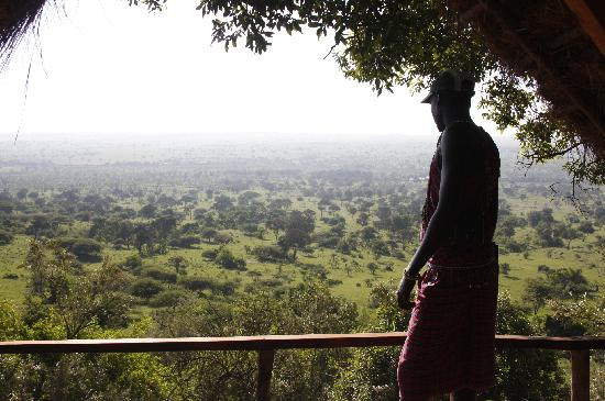 Serian Safari: View over conservancy from Serian Tree House