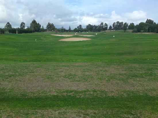 Citrus Golf Course: Driving Range, looking up