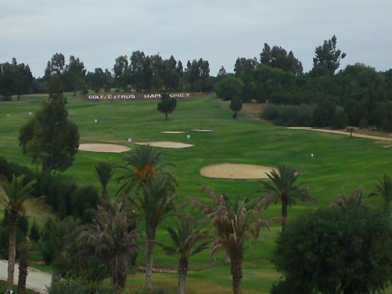 Citrus Golf Course: Looking down on the driving range from the clubhouse