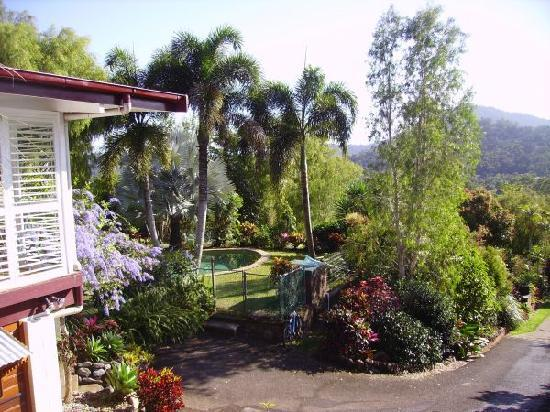 Brinsmead Studios: Pool and tropical gardens