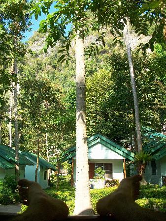 Krabi Mountain View Resort: bungalow