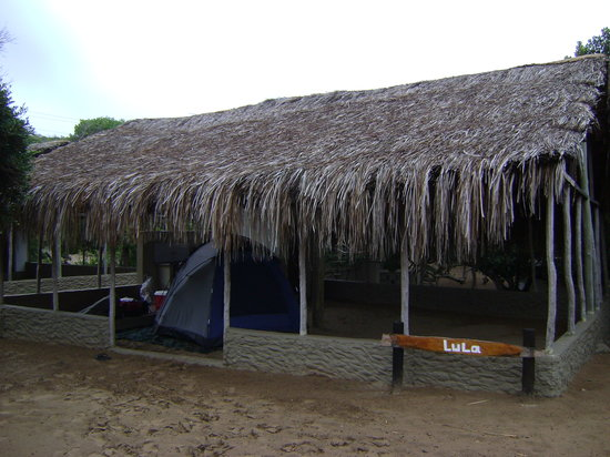 Chidenguele, Mozambique : Grass-like shaded tent site