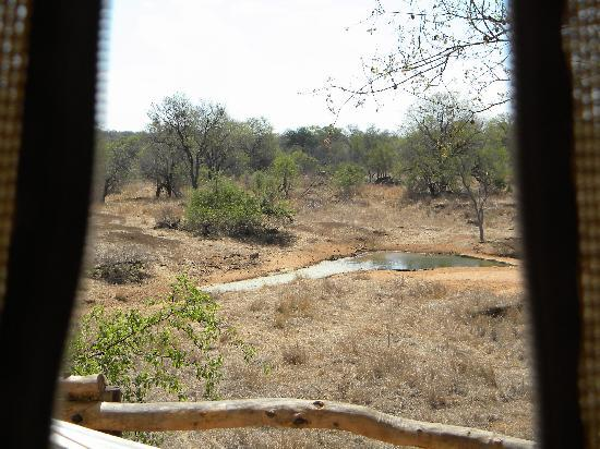 Garonga Safari Camp: A room with a view