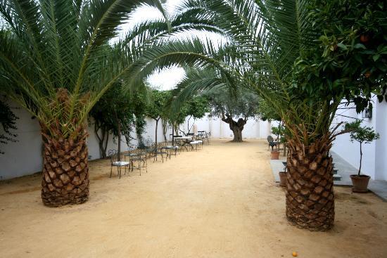 Palma Del Rio, Hiszpania: vorderer Hof